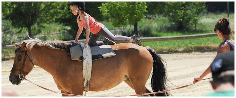 Equitation, voltige et spectacle équestre